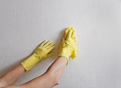 Professional Cleaners South East London